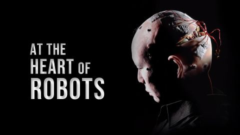 At the Heart of Robots