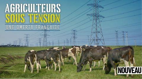 Agriculteurs sous tension, une omerta française
